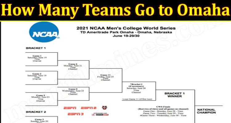 How Many Teams Go to Omaha (June) Get Deep Insight!