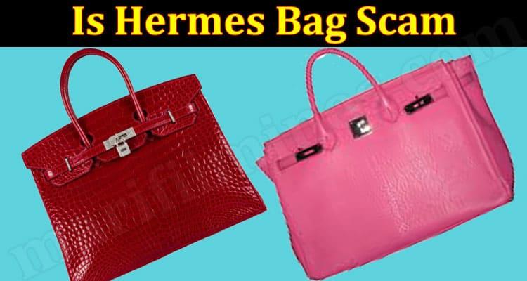 Is Hermes Bag Scam (June 2021) Checkout Details Now!