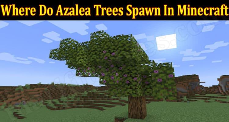 Where Do Azalea Trees Spawn In Minecraft {June 2021} Read