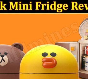 Duck Mini Fridge Review 2021.