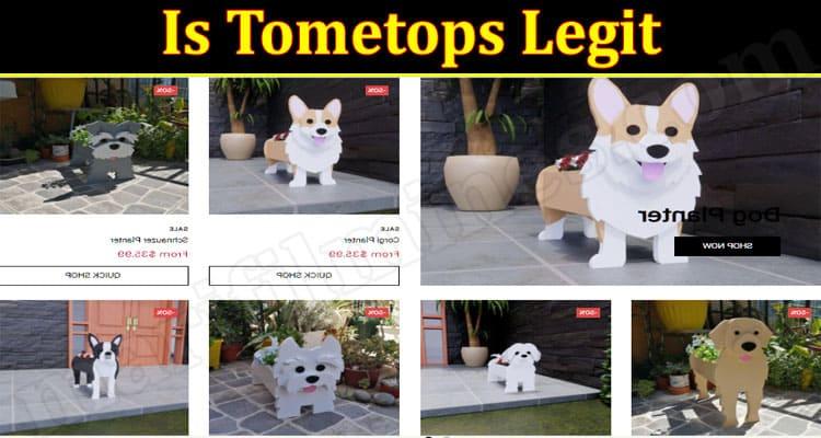 Is Tometops Legit 2021.