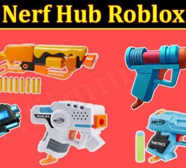 Nerf Hub Roblox Online Game Reviews