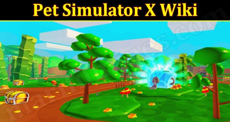 Pet Simulator Online Game Reviews 2021 marifilmies