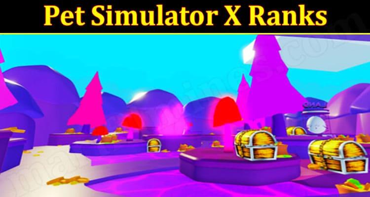 Simulator X Ranks Online Gme Reviews