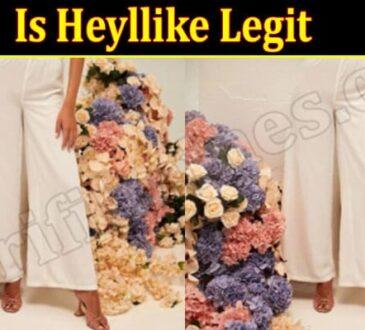 Heyllike Online Website Reviews
