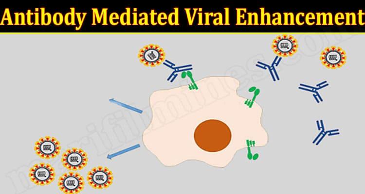 Latest News Antibody Mediated Viral Enhancement