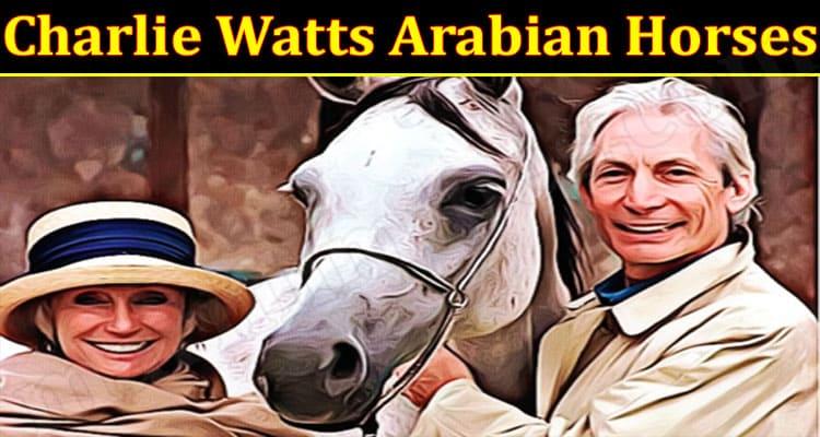 Latest News Charlie Watts Arabian Horses