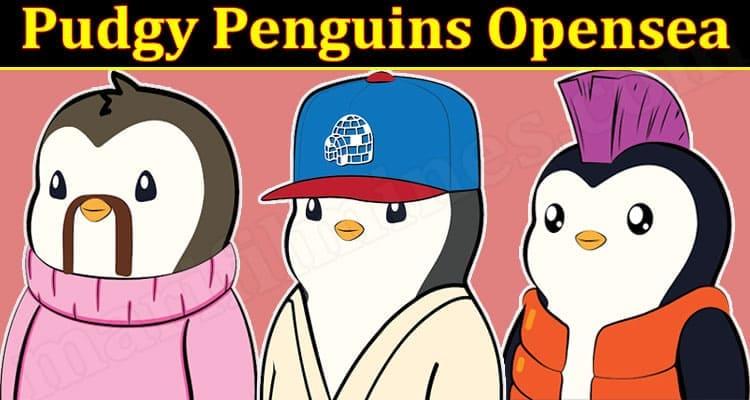 Pudgy Penguins Opensea 2021