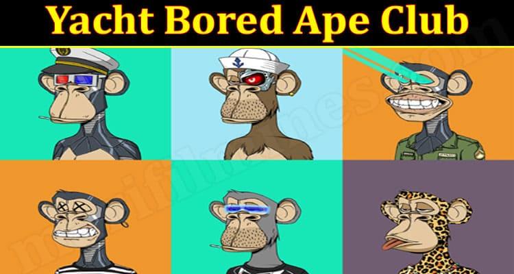 latest News Yacht Bored Ape Club