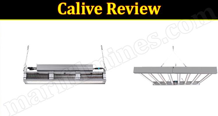Calive Online website Review