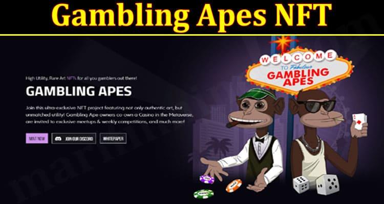 GAming Tips Gambling Apes NFT