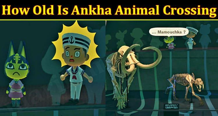Gaming Tips Ankha Animal Crossing