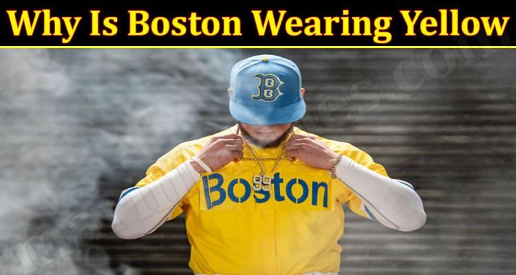 Gaming Tips Boston Wearing Yellow