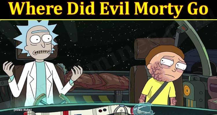 Gaming Tips Evil Morty Go