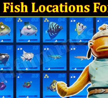 Gaming Tips Tuna Fish Locations Fortnite.