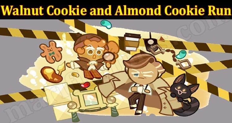 Latest News Walnut Cookie and Almond Cookie Run