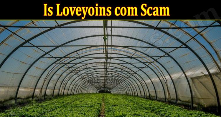 Loveyoins Online Website Reviews