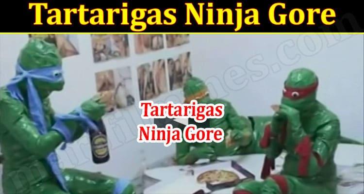 Gaming Tips Tartarigas Ninja Gore