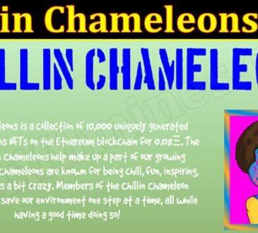 Latest News Chillin Chameleons NFT