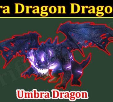Latest News Umbra Dragon Dragonvale